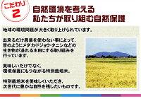 【送料無料!】新潟ひかりっこ新潟県産特別栽培米ひかりっこ米5kg100%自家製のこしひかり!