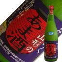 酒田醗酵 みちのく山形のあま酒 720ml