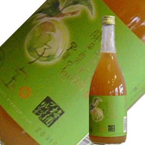 単式蒸留焼酎・南高梅を使用楯の川酒造 子宝 プレミアムリッチ梅酒 720ml