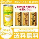 カロリーメイト 缶 200ml×30本×2ケース