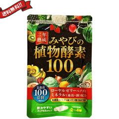 厳選した100種類の野菜や果物を2年間じっくり熟成メール便送料185円 二年熟成 みやびの植物酵素...