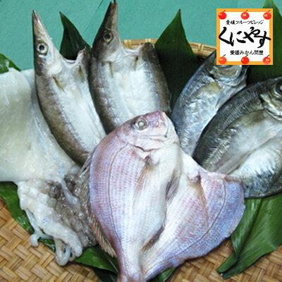 【送料無料】【鮮度抜群CAS冷凍品】【天然魚】宇和海朝獲れ鮮魚の「一夜干し6枚セット」(真鯛1枚、カマス2枚、釣アジ2枚、スミイカ1枚)