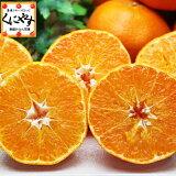 甘平 かんぺいみかん 送料無料 訳あり愛媛甘平3kg(3キロ×1箱)せとかにも匹敵する柑橘 わけあり「訳あり甘平3」