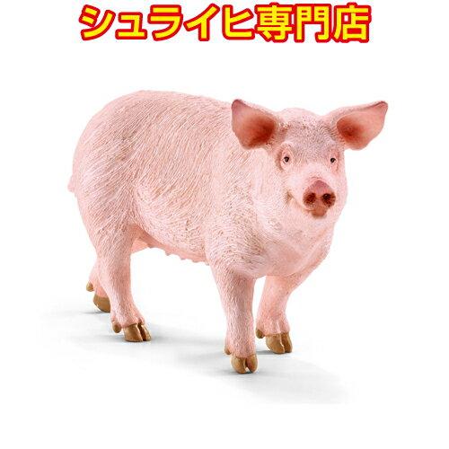產品詳細資料,日本Yahoo代標|日本代購|日本批發-ibuy99|【シュライヒ専門店】シュライヒ ブタ 13782 動物フィギュア ファームワールド FARM WO…