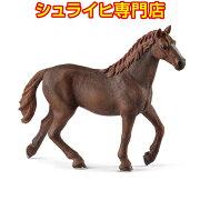 シュライヒ動物フィギュア13855イングリッシュサラブレッド(メス)