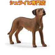 シュライヒ動物フィギュア13895ローデシアン・リッジバック