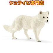 シュライヒ動物フィギュア14805ホッキョクギツネ