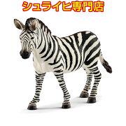 シュライヒ動物フィギュア14810シマウマ(メス)
