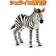 シュライヒ動物フィギュア14811シマウマ(仔)