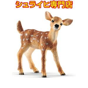 [Schleich Specialty Store] Schleich 흰 꼬리 사슴 14820 Animal Figure Wild Life Wild Forest Forest schleich