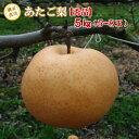 あたご 梨 秀品 ご贈答用 5kg(5〜8玉) 鳥取県産 送料無料 ギフト 産地直送 お歳暮(※北海道、沖縄は別途送料を頂戴いたします)