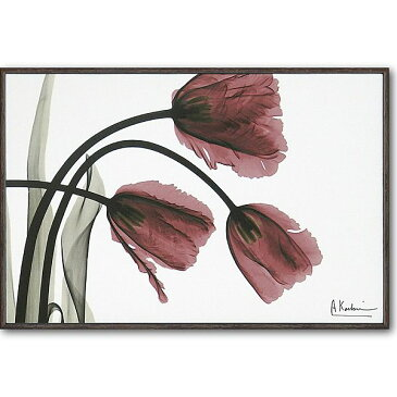「フリンジチューリップ」X−RAY キャンバスアート [絵画通販]花 レントゲンアート アート【絵のある暮らし】【壁掛けフックつき】
