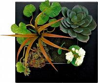 【ツーウェイグリーンアート】ブラックフレーム・グリーンアレンジD・Sサイズ(リーフインテリアフレーム)【人工観葉植物フレーム】[絵画通販]【絵のある暮らし】