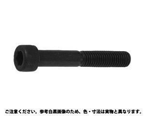 CAP(アンブラコロックウェル鉄12X60(入数50
