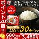 パックご飯 ご飯パック 低温製法米のおいしいごはん 国産米100% 角型 180g×30パ…