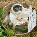 フロマージュ ド みらさか 90g 広島 日本 国産 チーズ 白カビ ホワイトチーズ 牛乳 三良坂フロマージュ 牧場 三次市