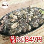 国産 炭火焼鶏 500g 南九州産 鶏肉 100% 鶏の炭火焼 宮崎名物 業務用