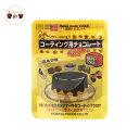 洋生チョコレート ミルク 100g 共立食品 HomemadeCAKE