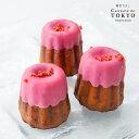 東京カヌレ カヌレグラッセ(ストロベリー)プレゼント にフランス 焼き菓子 を人気 洋菓子 職人がアレンジした かわいい スイーツ♪