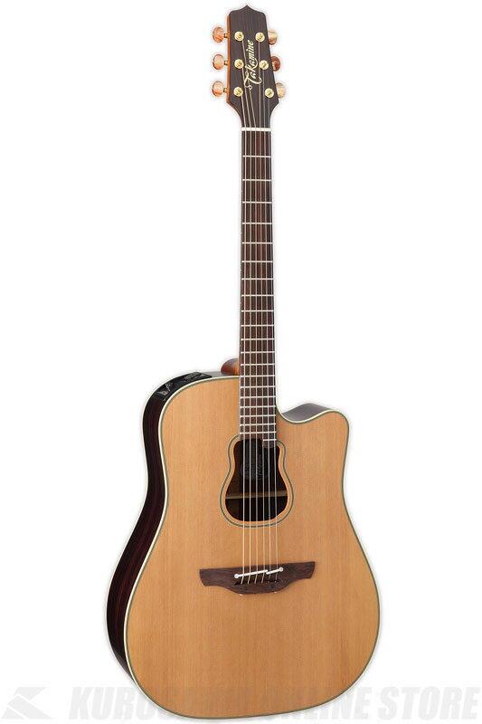 ギター, エレアコギター Takamine GB7CN