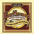 ERNIE BALL #2063 Earthwood 5-String Banjo Bluegrass Loop End 80/20 Bronze Acoustic Guitar Strings《バンジョー弦》【ネコポス】