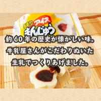 【送料コミコミ価格】松永牛乳懐かしさを感じるアイスまんじゅう20個入りドライアイス発泡スチロール入りで安心♪
