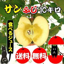 優品サンふじりんご10キロ