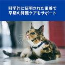 キャットフード ヒルズ プリスクリプション・ダイエット k/d ケイディー早期アシスト 猫用 チキン 2kg ■ 療法食 腎臓ケア 成猫 アダルト 2