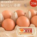 【普段使いにおススメ】櫛田養鶏場のおいしい赤卵【20個入り(破卵保障2個含む)】食品/鶏卵/卵