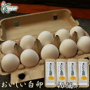 櫛田養鶏場のこだわりのエサを食べてうまれた美味しい白卵【40個入り(破卵保障4個含む)】送料無料!!鶏卵/食品/卵/たまご/