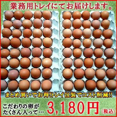 【愛知●尾張】櫛田養鶏場のおいしい赤卵80個(内10個割れ保障)【送料無料】食品/卵/鶏卵/お得