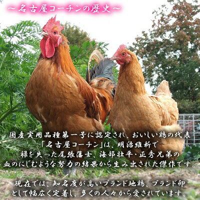 【愛知●尾張】特別価格セット商品!!高級名古屋コーチンの卵(20個入り)+おいしい白卵(20個入り)【送料無料】合計40個入り