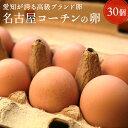 愛知が誇るブランド卵☆名古屋コーチンの卵【30個入り(破卵保