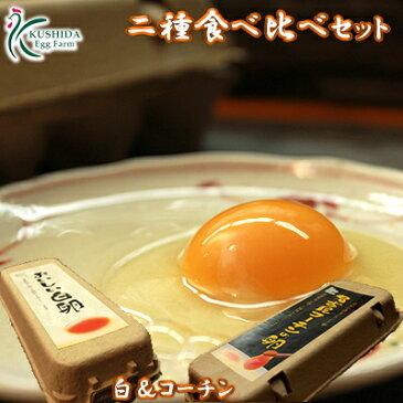 【二種食べ比べセット】高級名古屋コーチンの卵(20個入り)+おいしい白卵(20個入り)【送料無料】合計40個入り 食品/卵/鶏卵/40個/お得/