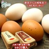 先着50セット!!\商品名が変わりました/おいしい卵→【くしたま】1,000円ポッキリ!!くしたま赤卵10個入+くしたま白卵10個入【合計20個(18個+破卵保障2個)】おひとり様4セットまで!!【楽天イベント時限定発売(お買い物マラソンorスーパーセール時)】