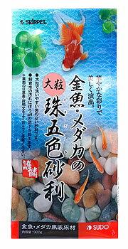 スドー スターペット 金魚・メダカの大粒珠五色砂利 S-8770 (900g) 金魚・メダカ用 底砂 底床材