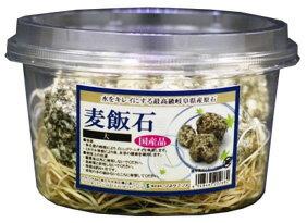ソネケミファ 麦飯石 カップ入り 大 (1個) 水槽用レイアウト 飾り 観賞魚用品