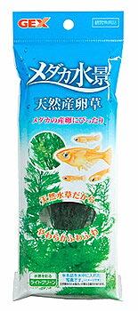 ジェックス メダカ水景 天然産卵草 (1個) メダカ用 水草 産卵床 観賞魚用品