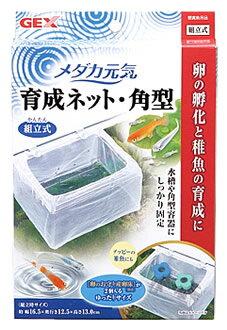 ジェックス メダカ元気 育成ネット 角型 (1個) 稚魚育成 観賞魚用品