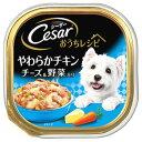 マースジャパン シーザー おうちレシピ 成犬用 やわらかチキン チーズ&野菜入り (100g) ドッグフードウェット 総合栄養食
