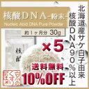 〓送料無料&10%OFF〓《5個おまとめ買い》『 核酸DNA 30g-粉末タイプ- ×5 』国産・高純度・合成品不使用/【国産】天然のサケ白子由来/核酸DNA含有量90%以上【RCP】【05P03Dec16】