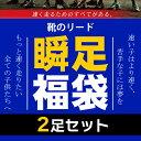 【6月5日以降発送】瞬足 福袋 【2足SET】 小学生に大人気の瞬足が...