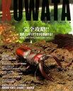 KUWATA(クワタ) No.25★国産ノコギリクワガタを迎撃する!