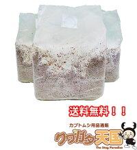 上級者向け菌糸ビン詰め替え用菌糸ブロック◆E-Block×9個