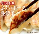 ふくいポーク生餃子10個入