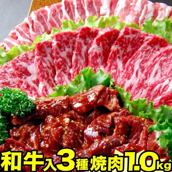 焼肉福袋1kg|和牛肉豚カルビ牛ハラミ|焼肉セット食べ比べ国産焼き肉メガ盛りバーベキュー牛肉父の日ギフト出産内祝い父の日お中元プ