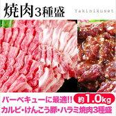 国産牛カルビ・けんこう豚バラ焼肉・牛ハラミ(焼肉のたれ付) 【バーベキューセット】[焼肉セット]