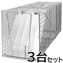 【踏板式 捕獲器 改良型(シルバー)3台セット】(W26×H31×D81cm) アライグマ ハクビシン 防除