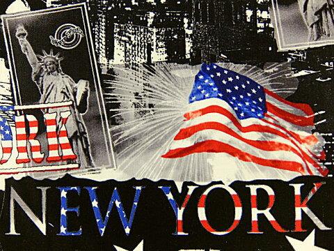 生地 布 輸入 USAコットン インディペンデンス セレブレート3 8038−76 ニューヨーク 自由の女神 マンハッタン カンヴァス ベナーテックス 商用利用可能