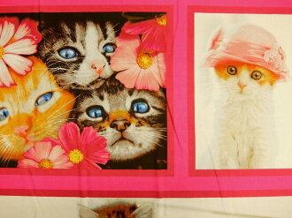 小組模式布美國棉花貓瘋狂貓瘋狂 AVT15810-205 羅伯特 · 考夫曼羅伯特 · 考夫曼可愛小貓羅伯特 · 考夫曼商用 10P03Dec16